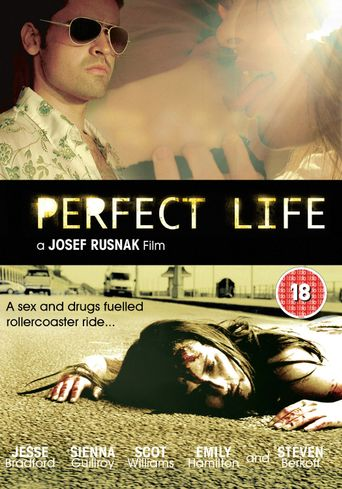 Perfect Life Poster