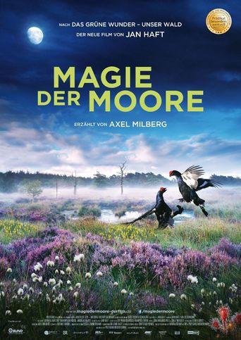 Magie der Moore Poster