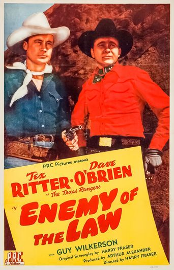 Enemy of the Law Poster