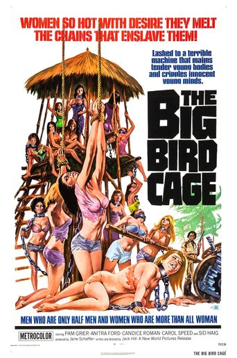 The Big Bird Cage Poster