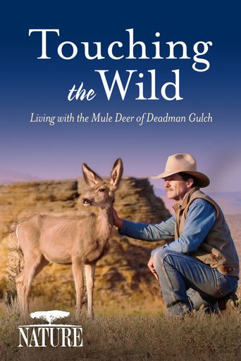 Nature: Touching the Wild: Living with the Mule Deer of Deadman Gulch Poster