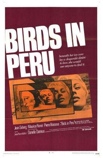 Birds in Peru Poster