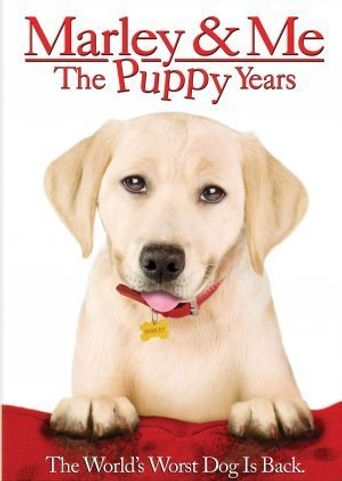Watch Marley & Me: The Puppy Years