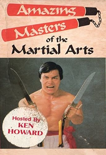 Amazing Masters Of Martial Arts Poster