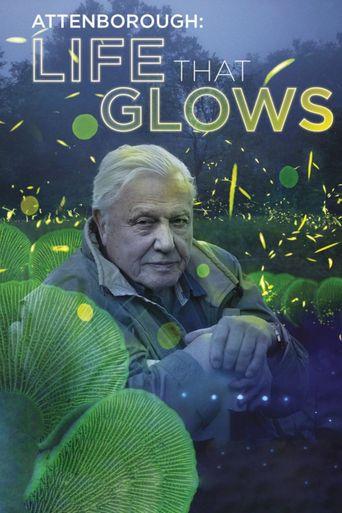 Attenborough's Life That Glows Poster
