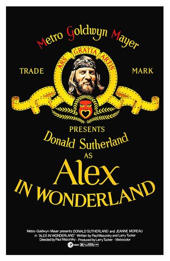Alex in Wonderland Poster