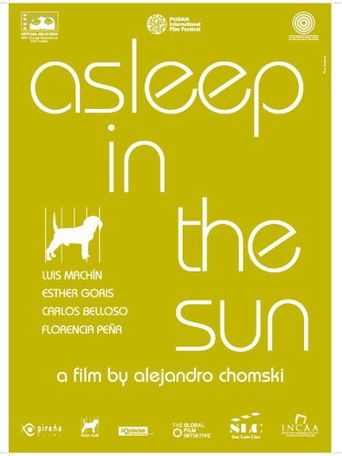 Asleep in the Sun Poster