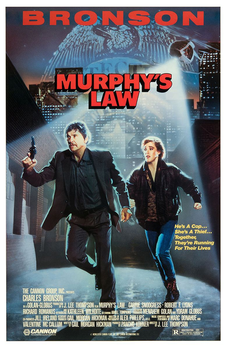 Murphy's Law Poster