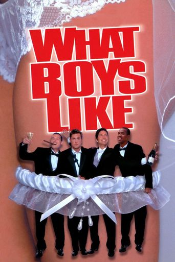 What Boys Like Poster