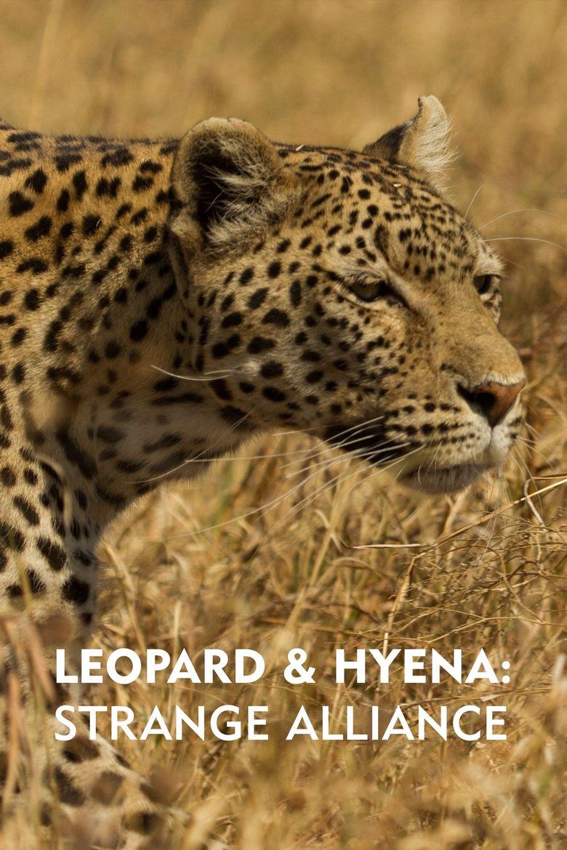 Leopard & Hyena: Strange Alliance Poster