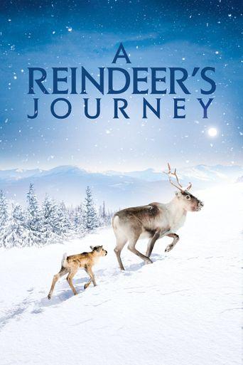 A Reindeer's Journey Poster