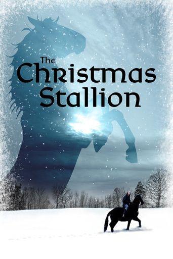 The Winter Stallion Poster