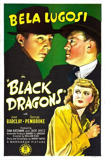 Black Dragons Poster