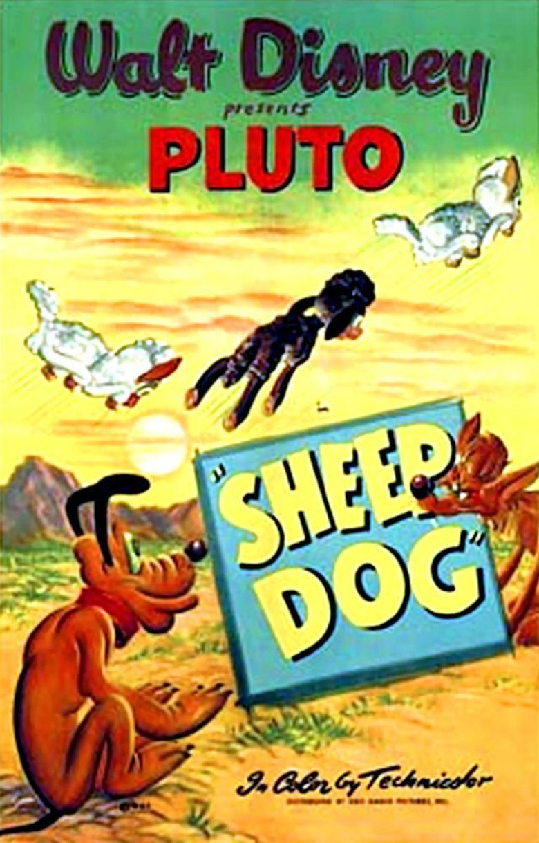 Sheep Dog Poster