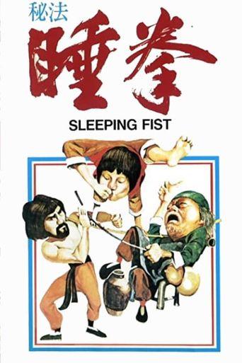 Sleeping Fist Poster