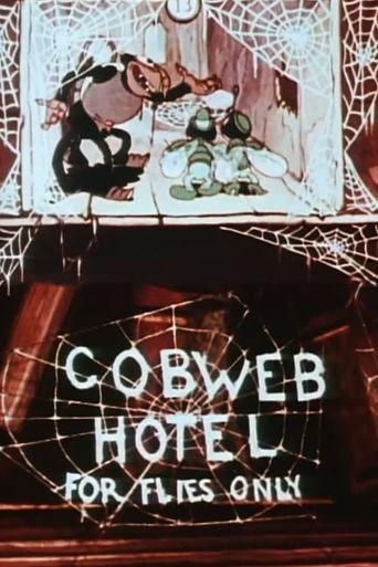The Cobweb Hotel Poster