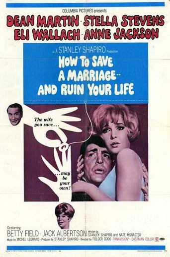 How to Save a Marriage and Ruin Your Life Poster