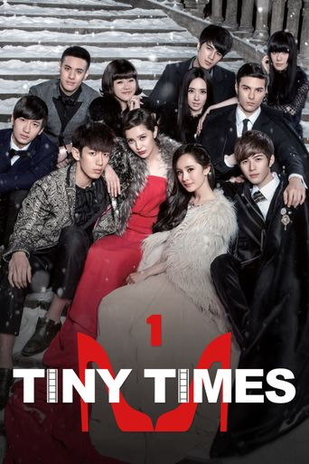 Tiny Times Poster