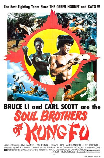 Soul Brothers of Kung Fu Poster