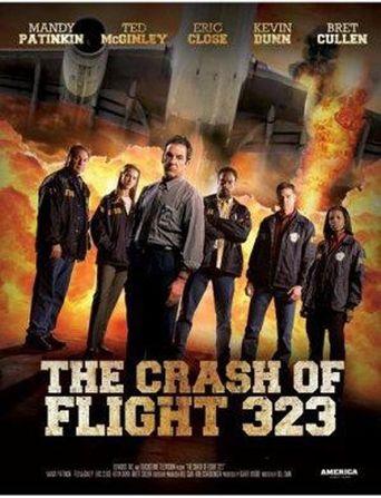 NTSB: The Crash of Flight 323 Poster
