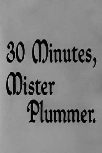 30 Minutes, Mister Plummer Poster