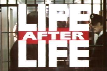Life After Life Poster