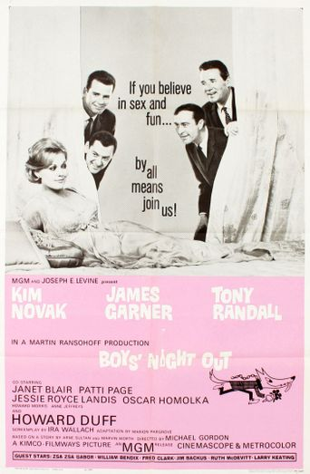 Watch Boys' Night Out
