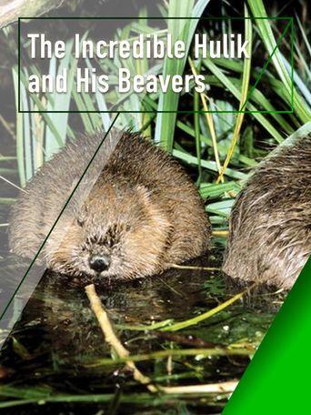 The Incredible Hulik and His Beavers Poster