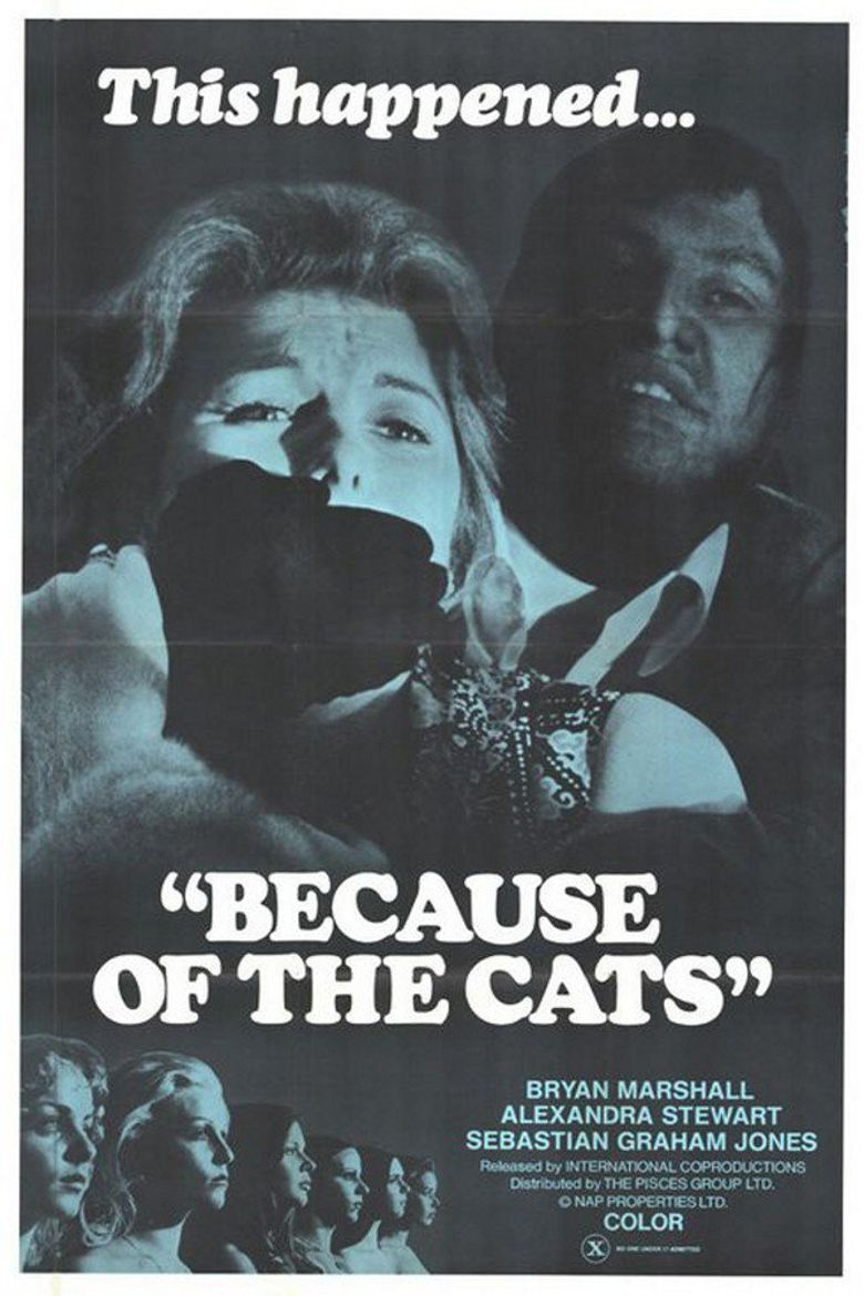 Because of the Cats Poster