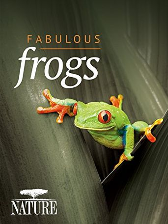 Fabulous Frogs Poster