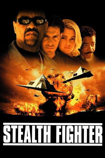 Stealth Fighter Poster