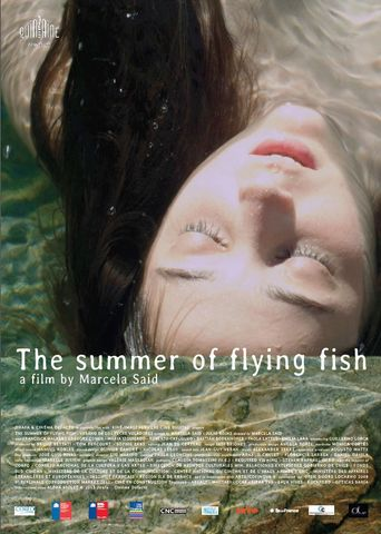 The Summer of Flying Fish Poster