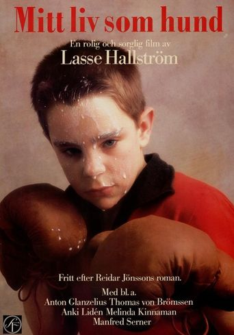 Watch My Life as a Dog