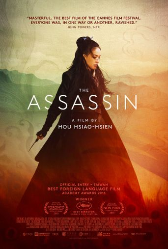 Watch The Assassin