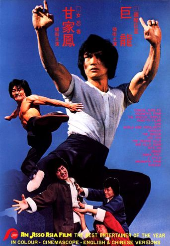 The Dragon's Snake Fist Poster