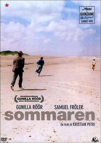 Between Summers Poster