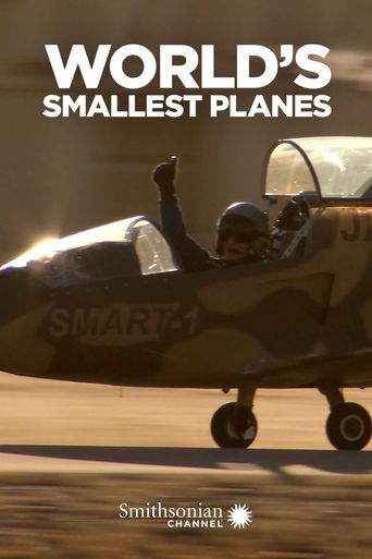 World's Smallest Planes Poster