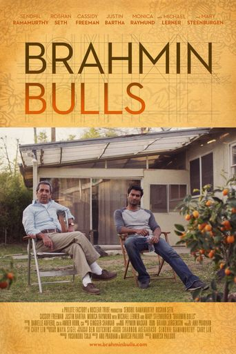 Brahmin Bulls Poster
