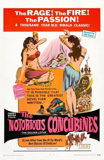 The Notorious Concubines Poster