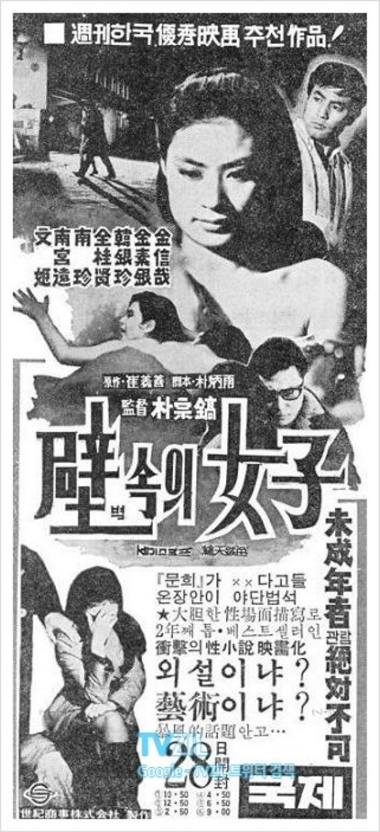 A Woman in the Wall Poster