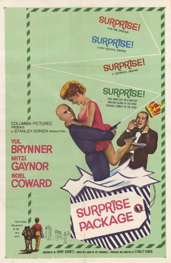 Surprise Package Poster
