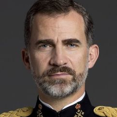 King Felipe VI of Spain Image
