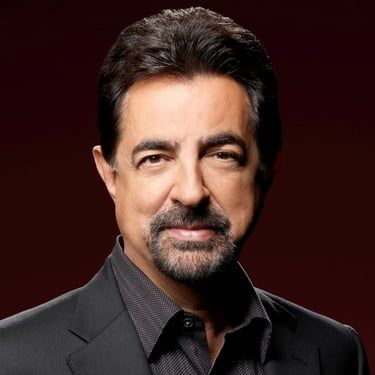 Joe Mantegna Image