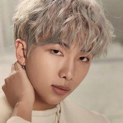 Kim Nam-joon Image
