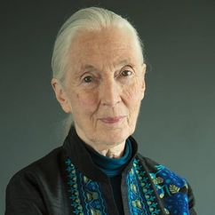 Jane Goodall Image