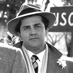 Riccardo Fellini Image