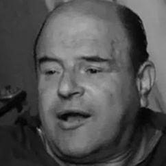 Josef Šebánek Image