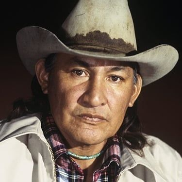 Will Sampson Image