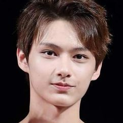 Wen Junhui Image