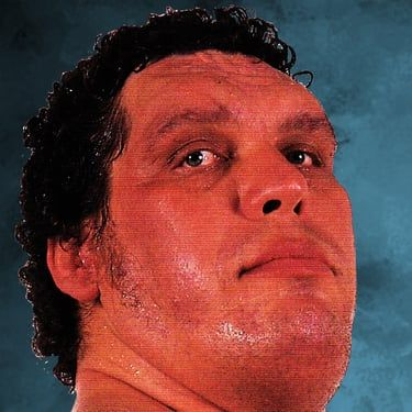 André the Giant Image